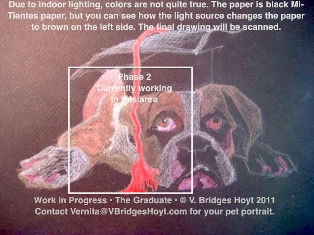 Dog-Boxer-Thor-Graduate2-9x12-cp