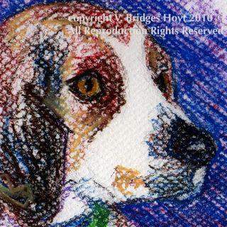 Etsy-dog-BeagleGreen-5x7-PASTEL-VBHoyt